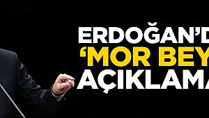 Erdoğan'dan Mor Beyin açıklaması