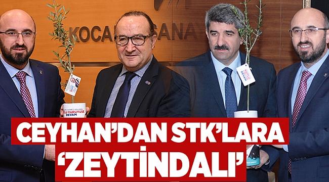 Ceyhan'dan STK'lara 'Zeytin Dalı'