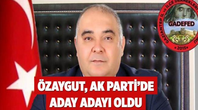 Özaygut, AK Parti'de aday adayı oldu