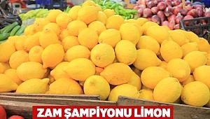 Zam şampiyonu limon