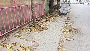İlyasbey Caddesi pislik içerisinde