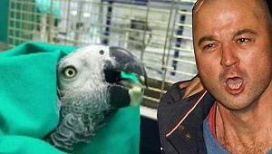 Murat Özdemir'in işkence yaptığı papağan öldü