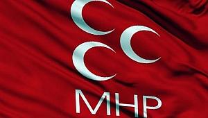 MHP'de SKM'nin başına Taşdemir geçti