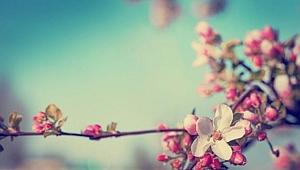 Bahar havaları geliyor
