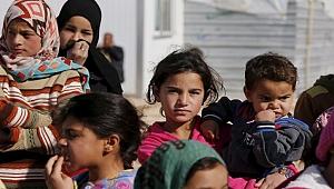 En çok Suriyeli, Gebze'de