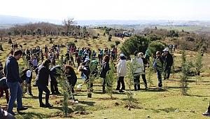 Gebze'de 2 bin 500 fidan toprakla buluştu
