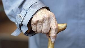 Kocaeli'de yaşlılık oranı ne kadar?