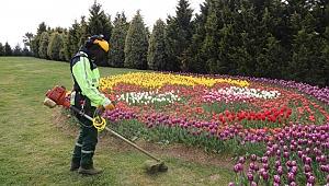 Kocaeli'nde bahar temizliğine başlandı
