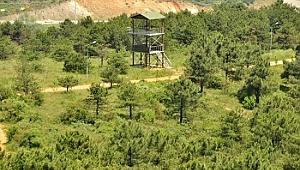 Gebze Gaziler Dağı Mesire alanını kiraya verilecek