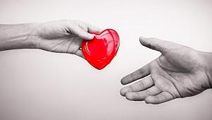 Kocaeli organ bağışında birinci sırada