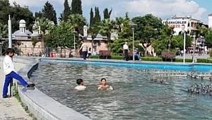 Sıcaktan bunalıp süs havuzuna girdiler