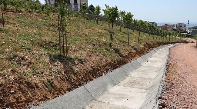 Gebze Tatlıkuyu Vadisine 3 bin ağaç dikildi