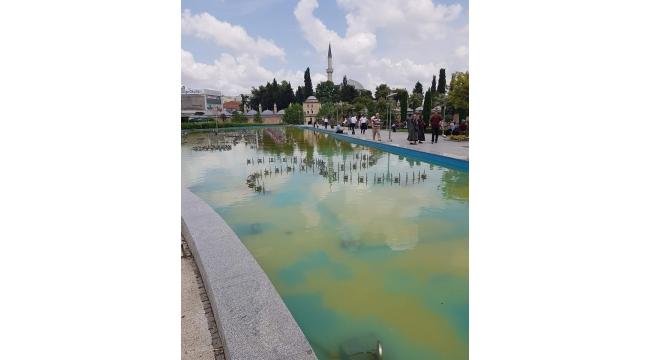 Süs havuzlarını PİSLİK götürüyor!