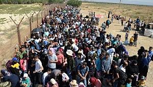 Kocaeli'deki Suriyeli sayısı 57 bini geçti!