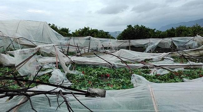 Dolu yağışı çiftçiyi vurdu