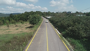 İzmit Sapakpınar köy yoluna neşter