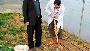 Çiftçilere analiz desteği ile doğru üretim sağlanıyor