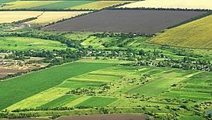 Kocaeli'de dev tarım arazisi icralık oldu!