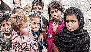 Kocaeli'de Suriyeli sayısı kaç!