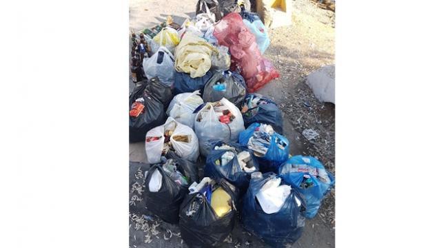 Darıca Sahil'de 30 poşet çöp topladı