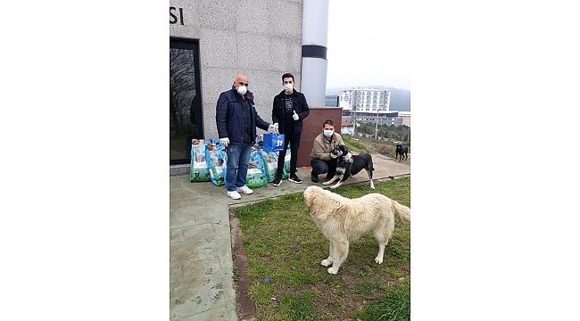Büyükşehir'den sokak hayvanlarına 3 ton mama takviyesi