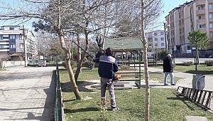 Darıca'da bahar hazırlığı sürüyor