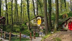 Orman'ya 2 hafta süreyle kapatıldı
