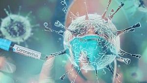 Bilim insanları açıkladı: Nem koronavirüsün yayılmasını engelliyor