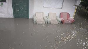 Dilovası'nda yağmur su baskınlara neden oldu
