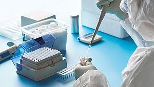 Kocaeli'de kaç işçide koronavirüs çıktı ?