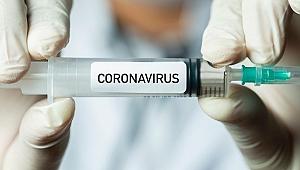 Türkiye'de ilk koronavirüs aşısı