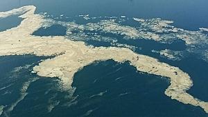 Marmara Denizi için toplanıyorlar