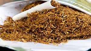 İzmit'te çok sayıda makaron ve tütün ele geçirildi