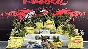 33 kilo 450 gram esrar ele geçirildi!