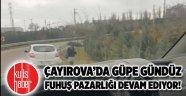 Çayırova'da güpe gündüz fuhuş pazarlığı devam ediyor!