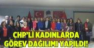 CHP'li kadınlarda görev dağılımı yapıldı!
