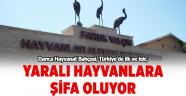 Darıca Hayvanat Bahçesi, Türkiye'de ilk ve tek