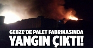 Gebze'de palet fabrikasında yangın çıktı!